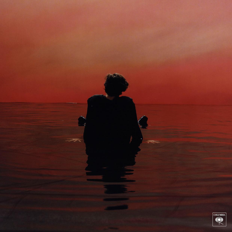 Harry Styles  - هاري ستايلز
